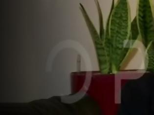 Φωτογραφία για Η μάνα του 5χρονου Στάθη που κατασπάραξαν 8 ροτβάιλερ: «Δεν μας ζήτησαν ούτε μια συγγνώμη» (βίντεο)