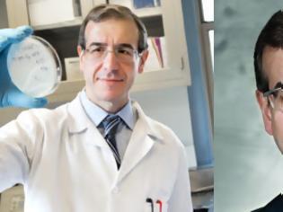 Φωτογραφία για Έλληνας επιστήμονας ανακάλυψε φάρμακο που καταστρέφει ανθεκτικά στελέχη σταφυλόκοκκου