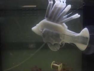 Φωτογραφία για Το πρώτο ρομποτικό ψάρι που κινείται με συνθετικό αίμα