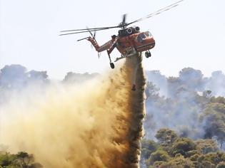 Φωτογραφία για Υπό έλεγχο η φωτιά στο Λαγονήσι - Προσήχθη ένα άτομο