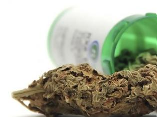 Φωτογραφία για Άδεια για καλλιέργεια και μεταποίηση φαρμακευτικής κάνναβης στο Αιτωλικό
