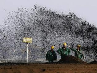 Φωτογραφία για Κοίτασμα πετρελαίου ανακάλυψε Έλληνας οικογενειάρχης που κάρφωνε επί 15 λεπτά την ομπρέλα του σε παραλία