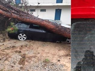 Φωτογραφία για Καταστροφές στο ΚΑΑΥ Νέας Μάκρης από το φονικό μπουρίνι