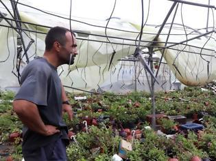 Φωτογραφία για Χαλκιδική: Εκτεταμένες καταστροφές σε καλλιέργειες