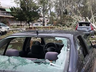 Φωτογραφία για Χαλκιδική: Οι εικόνες - σοκ της καταστροφής