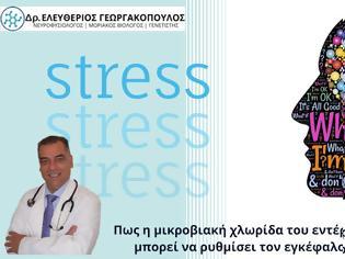 Φωτογραφία για Dr. Ελευθέριος Γεωργακόπουλος: Το υγιές έντερο «κλειδί» για την καταπολέμηση του άγχους και τη σωστή λειτουργία του εγκεφάλου