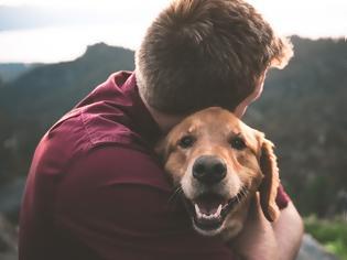 Φωτογραφία για Αν δεν έχεις ζήσει με ένα σκύλο, δεν έχεις καταλάβει τι θα πει ανιδιοτελής αγάπη..