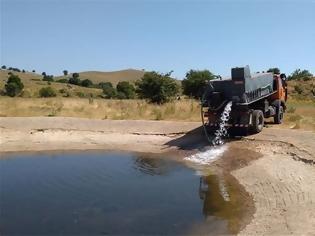 Φωτογραφία για Πίνδος: Στέρεψαν οι πηγές, με υδροφόρες νερό για τα κοπάδια