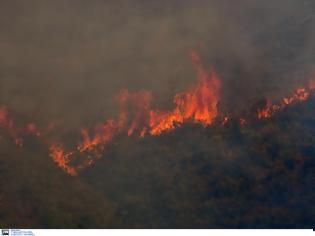 Φωτογραφία για Δήλωση του νέου Περιφερειάρχη Αττικής και Προέδρου της ΚΕΔΕ Γ. Πατούλη με αφορμή την πρόβλεψη ακραίου κινδύνου  πυρκαγιάς