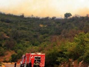 Φωτογραφία για Φωτιά στον Μαραθώνα