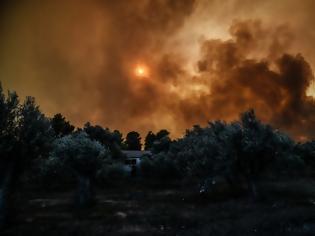 Φωτογραφία για Εύβοια: Ο καπνός της πυρκαγιάς φαίνεται από το Διάστημα
