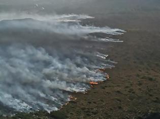 Φωτογραφία για Ορμητικά προς τη θάλασσα κινείται η φωτιά στον Πρόδρομο Βοιωτίας - Πιθανή η εκκένωση παραλιών