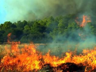 Φωτογραφία για Φωτιά στο Βασιλόπουλο Ξηρομερου