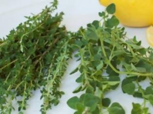 Φωτογραφία για Το... ταπεινό ελληνικό μυρωδικό βότανο προστατεύει από υπέρταση και καρκίνο!