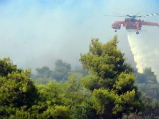 Φωτογραφία για Φωτιά και στην περιοχή των Καλαβρύτων