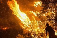 Άγρια νύχτα στην Εύβοια: Σε πύρινο κλοιό τα Ψαχνά και τέσσερα χωριά