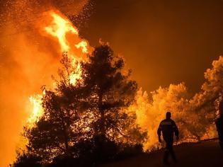 Φωτογραφία για Εκτός ελέγχου η φωτιά στην Εύβοια - Εκκενώθηκαν τέσσερα χωριά