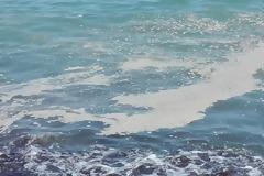 Οι αφροί στην θάλασσα δείχνουν ότι είναι βρόμικη;