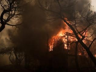 Φωτογραφία για 10 στρέμματα χορτολιβαδικής έκτασης κάηκαν σε φωτιά στη Στάνο Aμφιλοχίας