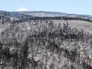 Φωτογραφία για Εύβοια: Ασύλληπτη η καταστροφή που αφήνει πίσω της η φωτιά