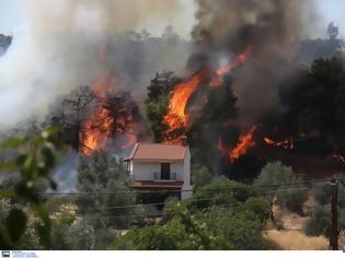 Φωτογραφία για Άρση τηλεφωνικού απορρήτου ζητούν οι Αρχές για την φωτιά στην Εύβοια