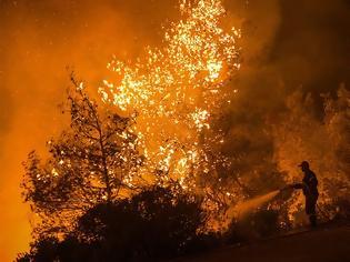 Φωτογραφία για Έβαλαν 8.270 φωτιές μέσα στο 2019 - Έλληνας, άνω των 45 και παντρεμένος με παιδιά ο εμπρηστής