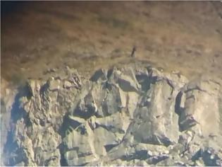 Φωτογραφία για Ήπειρος: Αλβανοί κυνηγούν αγριόγιδα στο Γράμμο!