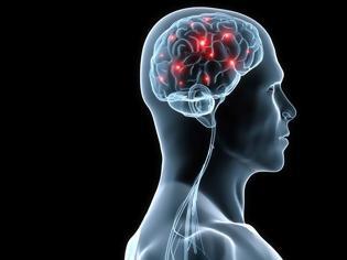 Φωτογραφία για Φως στη λειτουργία των εγκεφαλικών κυττάρων, ρίχνουν Έλληνες ερευνητές