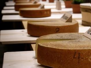 Φωτογραφία για Ποιο είδος μουσικής κάνει νοστιμότερο το τυρί;