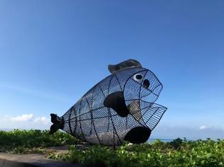 Φωτογραφία για Αυτό το ψάρι σώζει τις θάλασσες από τα πλαστικά