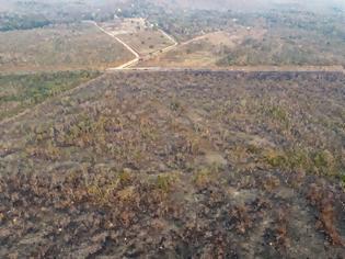 Φωτογραφία για Πυρκαγιές στον Αμαζόνιο: Σάλος με τους ισχυρισμούς Μπολσονάρου ότι ίσως ανάβουν τις φωτιές οι... ΜΚΟ!
