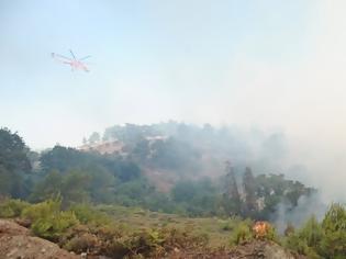 Φωτογραφία για Σε πλήρη έλεγχο η πυρκαγιά στην Παιανία