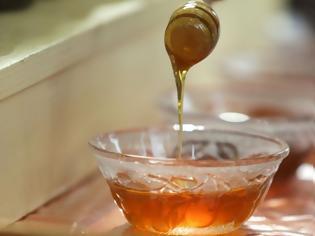 Φωτογραφία για Ένας άνδρας παρέμεινε υπό κράτηση 82 ημέρες επειδή έφερε... μέλι στη χώρα