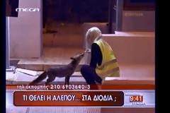 ΠΡΙΝ ΜΕΡΙΚΑ ΧΡΟΝΙΑ: Όταν οι αλεπούδες κρατούσαν συντροφιά σε υπαλλήλους στα ΔΙΟΔΙΑ ΑΚΤΙΟΥ - (video)