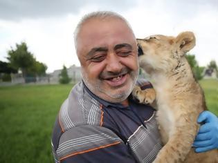 Φωτογραφία για ΒΙΝΤΕΟ.Λιονταράκι ανέπτυξε σχέση αγάπης με άνθρωπο όταν εγκαταλείφθηκε από τη μητέρα του