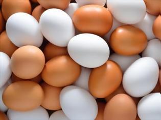 Φωτογραφία για Γιατί μερικά αυγά είναι λευκά και μερικά καφέ;