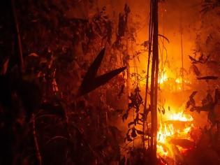 Φωτογραφία για Ο Αμαζόνιος φλέγεται με σχέδιο