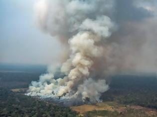 Φωτογραφία για Ποιοι επωφελούνται από την καταστροφή του δάσους του Αμαζονίου;