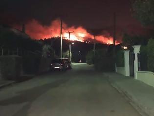 Φωτογραφία για Μεγάλη φωτιά στη Νέα Μάκρη