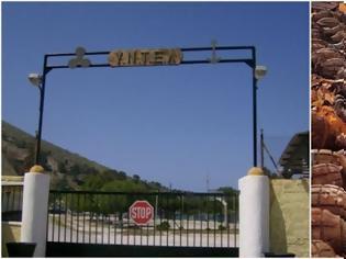 Φωτογραφία για Απόρρητο σήμα του ΓΕΕΘΑ: να γίνει καταγραφή πολεμικού υλικού σε «επικίνδυνα» στρατόπεδα