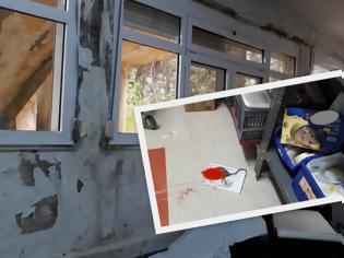 Φωτογραφία για Φρίκη! Ποντίκια στο νοσοκομείο Κιλκίς – Απομακρύνθηκαν οι ασθενείς από τους θαλάμους
