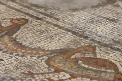 Συγκλονιστική ανακάλυψη ψηφιδωτού 1500 ετών ξαναγράφει την ιστορία βιβλικού θαύματος του Ιησού (pics & vid)