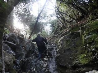 Φωτογραφία για 12579 - Αγιορείτικες φυσικές ομορφιές. Φωτογραφικό ταξίδι σε καταρράκτη κοντά στο Βατοπαίδι