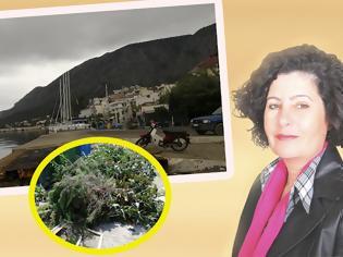 Φωτογραφία για Ανακοίνωση της ΑΡΕΤΗΣ ΓΡΙΤΣΙΠΗ προέδρου Κοινότητας Αστακού για την αποκομιδή κλαδιών και χόρτων