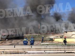 Φωτογραφία για Κορωπί: Υπό έλεγχο η φωτιά σε εταιρεία στη λεωφόρο Βάρης