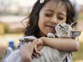 Φωτογραφία για Οι γάτες δένονται συναισθηματικά με τους ανθρώπους αλλά δεν το δείχνουν πάντα