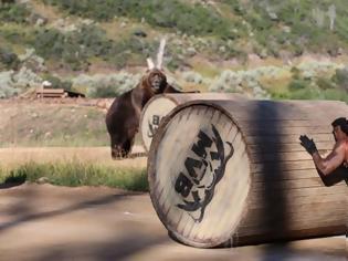 Φωτογραφία για Άνθρωπος εναντίον αρκούδας και όποιος αντέξει!