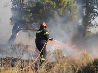 Φωτογραφία για Φωτιά στις Σπέτσες