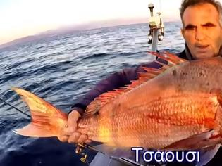 Φωτογραφία για Νέο βίντεο - Ψαρεμα στην Μηλινα