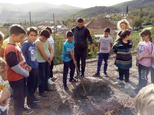 Φωτογραφία για Δεντροφύτευση στον προαύλιο χώρο του σχολείου, με πρωτοβουλία της ΚΟΙΝΟΤΗΤΑΣ ΑΕΤΟΥ Ξηρομέρου -ΦΩΤΟ